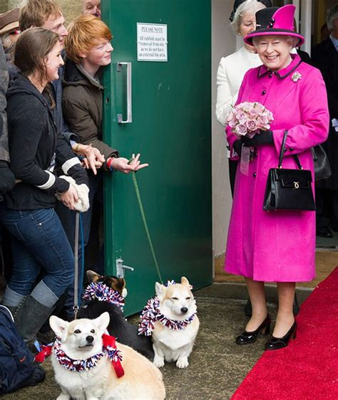 queen elizabeth ii corgis 15 fun facts about the queen national geographic kids