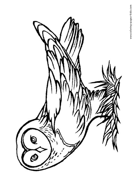 harry potter coloring book owl post lightning bolt coloring pages harry potter printable