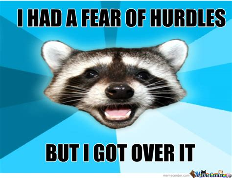 Lame Pun Coon Meme - teh lame pun coon by pcow meme center