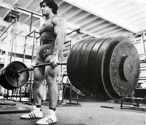 lou ferrigno bench press max lou ferrigno max bench press quotes