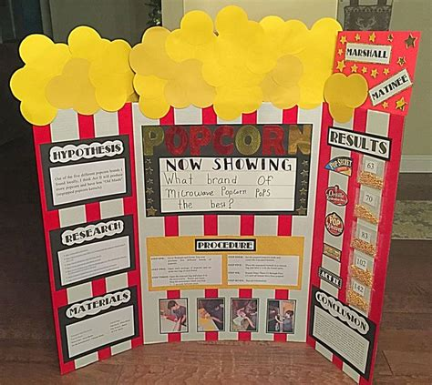 Science Fair Project Decorations by Best 25 Easy Science Fair Projects Ideas On