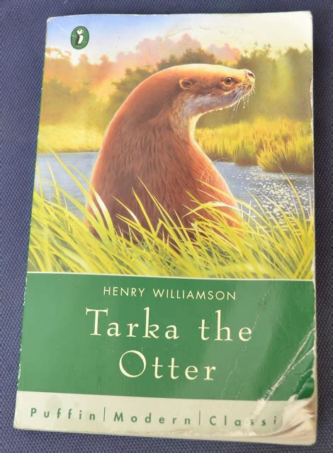 tarka the otter a ginx craft tarka the otter