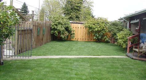 Backyard In Power Rake Your Yard With Specialized Services Yard