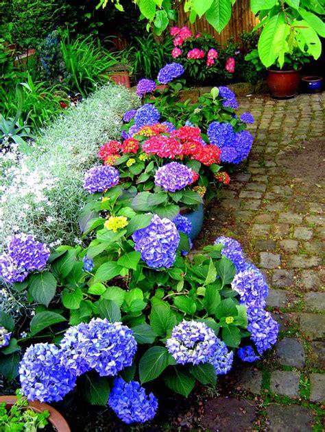 Blumen Garten by Garten Blumen Bilder News Infos Aus Dem Web
