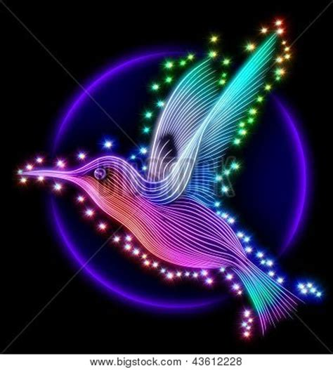 imagenes gratis en tercera dimensión 3d render of colibri bird hummingbird with stars stock
