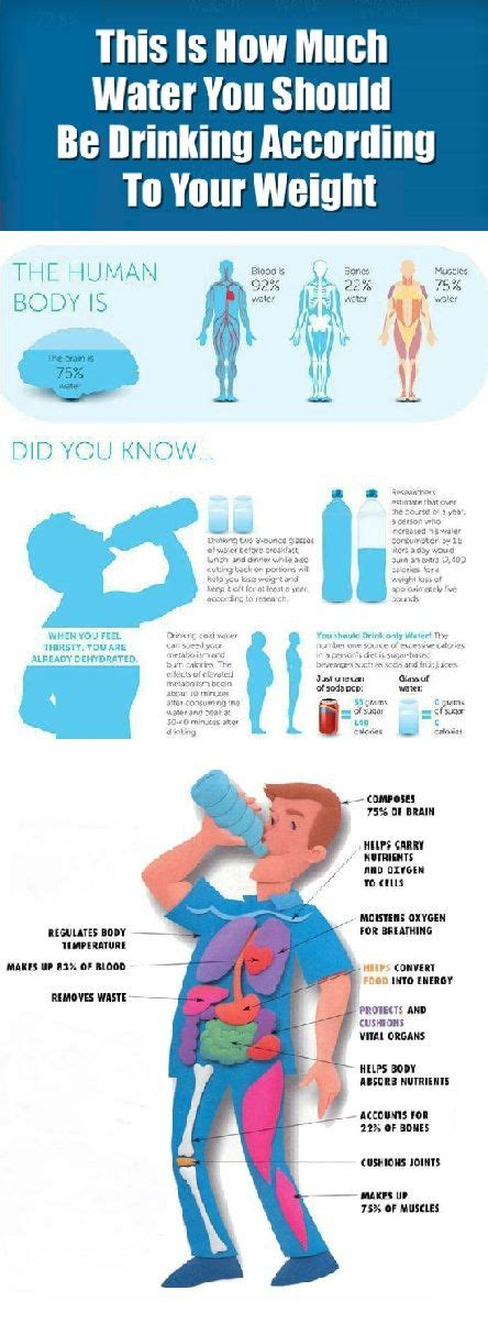 How Much Water Should You Drink To Detox From by Best 25 Water Challenge Ideas On Water