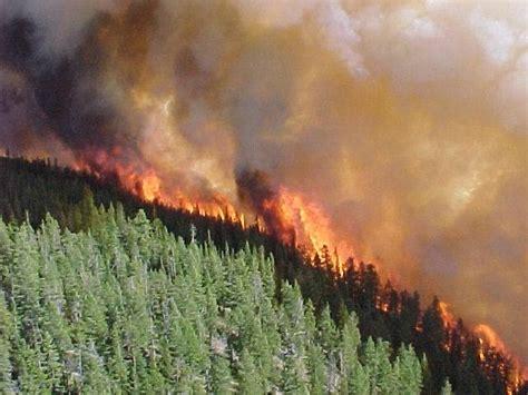 slash burning and wildfires