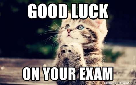 Funny Good Luck Memes - image gallery lucky cat meme