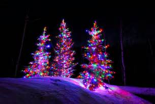 colored tree lights incandescent vs led professional lighting utah