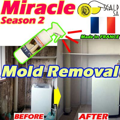 Miracle Season 2 Qoo10 Mold Removal Miracle Season2 Contaminated Cleaning Widely Used Kit Household