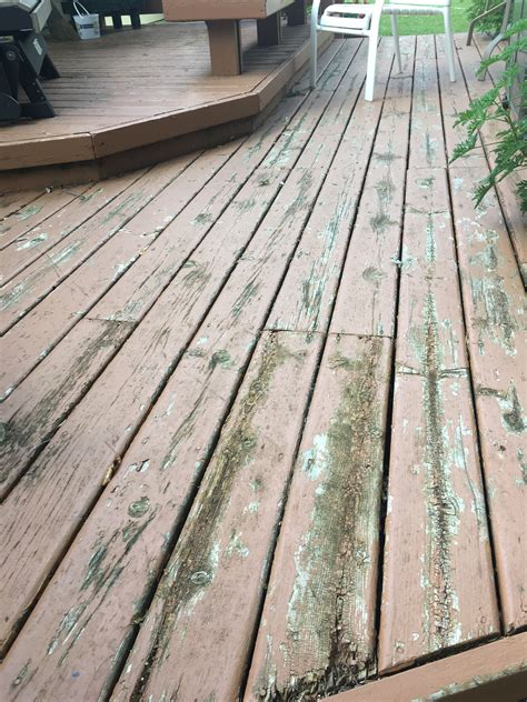 thompsons waterseal finish review  deck stain