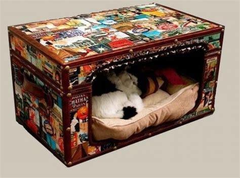 Cuccia Per Gatti Da Esterno Fai Da Te by Cuccia Fai Da Te 5 Idee Per Costruire Una Cuccia Per Cani