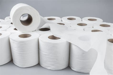 toilet paper rolls 60 rolls 3ply bulk buy 300 sheet rolls value