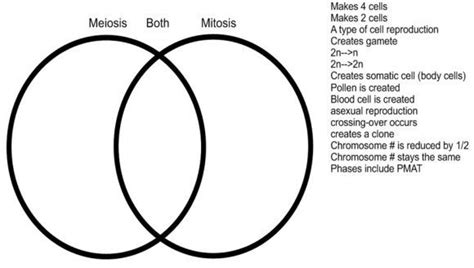 understanding venn diagrams show your understanding complete the venn diagram of mitosis and meiosis using the key