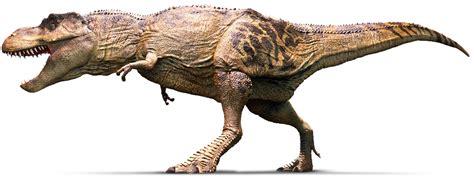 t rex tyrannosaurus rex vs giganotosaurus dinosaurs forum