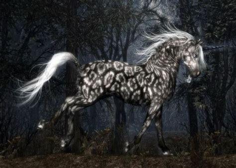 beautiful artworks  unicorn xcitefunnet