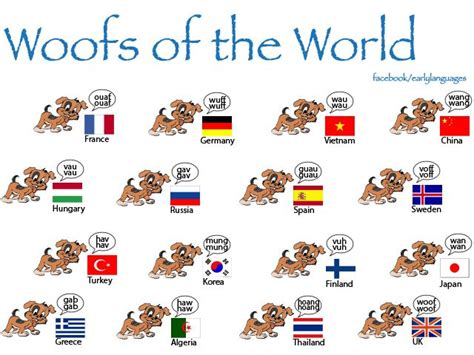 puppy sound different bark sounds around the world wlex languages and