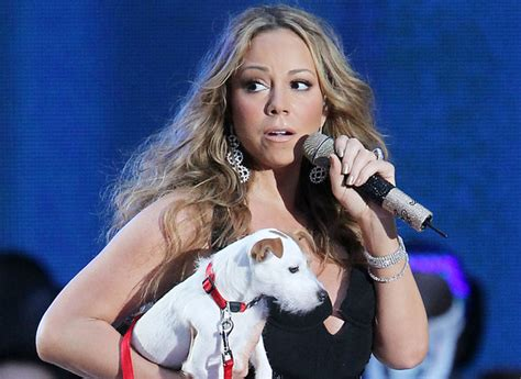 mariah carey dog house it s a dog s life for mariah carey s pet pooch as she is taken on stage celebrity