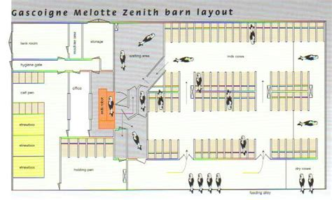 barn layouts goat barn layout plans joy studio design gallery best