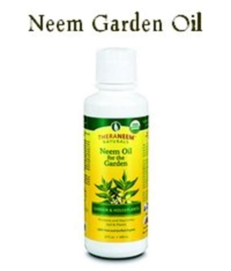 Garden Safe Neem by Is It Safe To Spray Neem