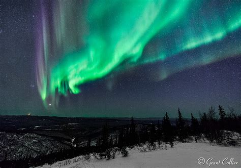 northern lights aurora borealis fairbanks alaska aurora borealis near fairbanks alaska pictures