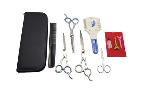 havanese reviews havanese grooming tools images