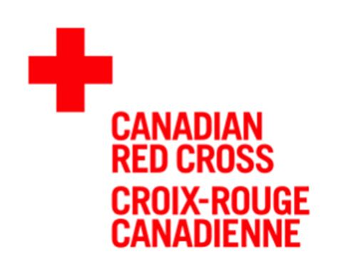 Redcross All In One one million community health workers notes from the field bringing health services to the