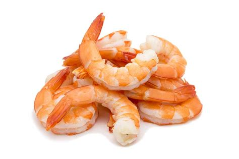 protein in shrimp protein in canned shrimp all articles about ketogenic diet