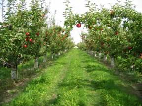 Fieldstone Barn Aspi Group Sun Basin Orchard