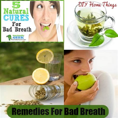 top diy remedies for bad breath diy home things