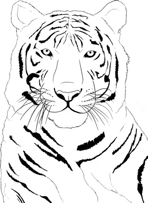 coloring pages siberian tiger siberean tiger coloring page animals town animals