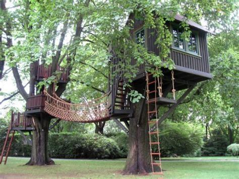 multi tree tree house with rope bridge treehouses and