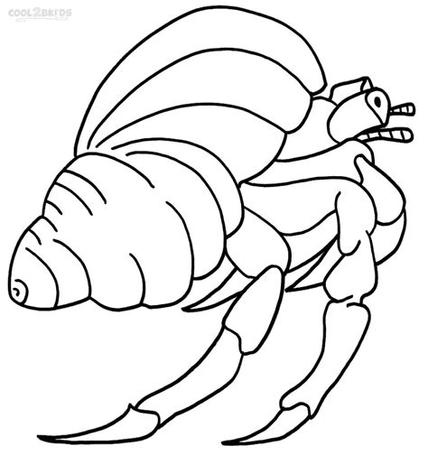 hermit crab template printable hermit crab coloring pages for cool2bkids