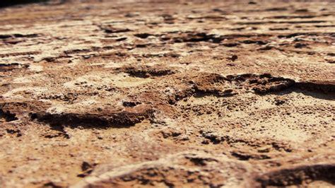 macro ground by hcsaszy on deviantart