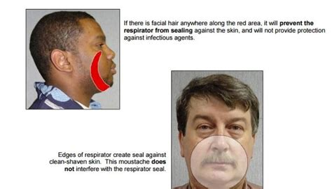 osha beard regulations respirators and facial hair related keywords respirators