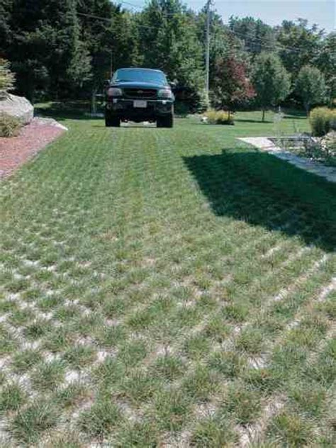 permeable pavers patios walkways and driveways made of porous pavement green homes mother