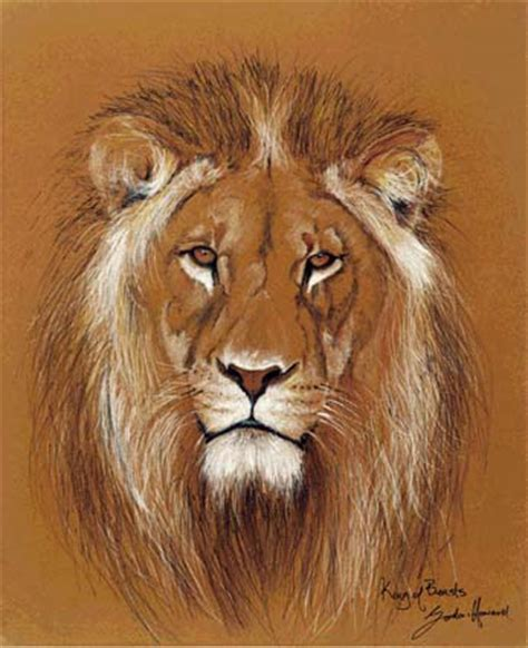 lion print the royal game series