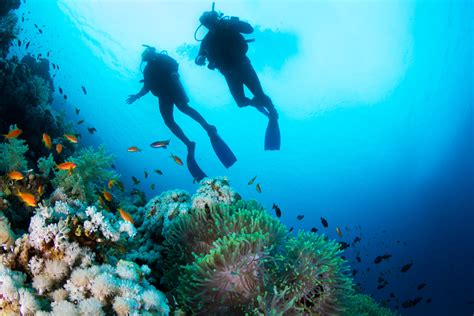 Kaos Diving Padi 2 breathtaking experiences you when learning to dive
