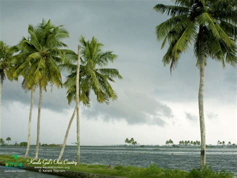wallpaper for walls kerala kerala beaches nature background wallpapers on desktop