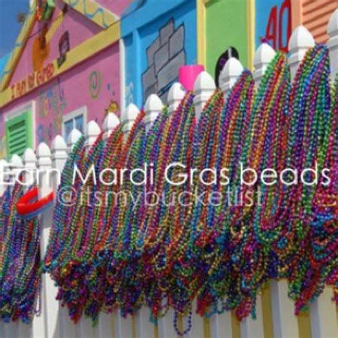 earning at mardi gras 17 best images about bucketlist on sharks