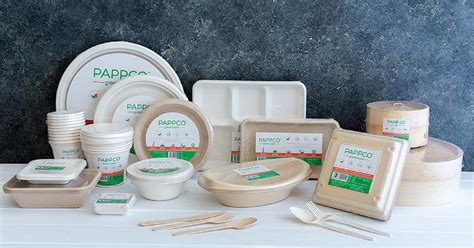 products made of plastic these eco friendly containers made of sugarcane are