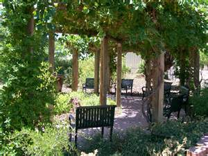 Mediterranean Home Plans grape arbor rio rancho waterwise garden