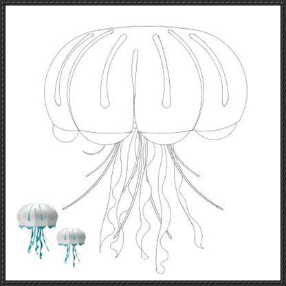 origami jellyfish tutorial jellyfish free paper model download