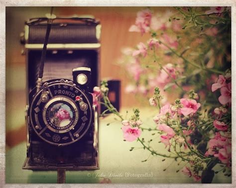 camera lover wallpaper il fullxfull 183843855 camera vintage 1280 215 768