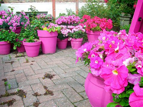 Flower Pot Garden Ideas Ideas For Planting Flower Pots Garden Guides
