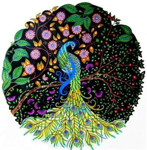 secret garden coloring book peacock peacock secret garden pavāo jardim secreto johanna