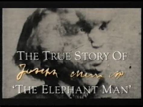True History Of The Elephant the elephant qed documentary the true story of