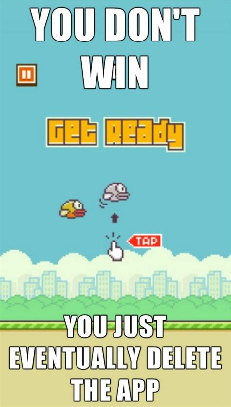 Flappy Bird Meme - best 25 bird meme ideas on pinterest