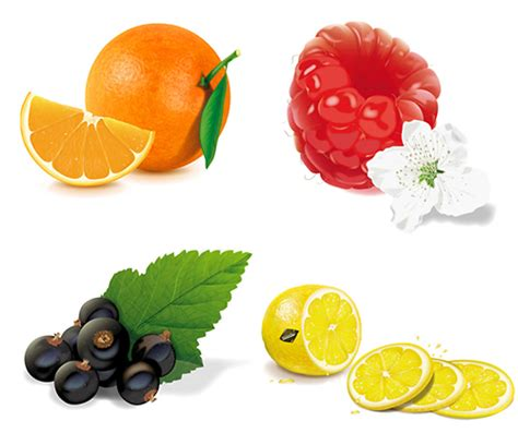 tutorial illustrator fruit 30 inspiring fruits and vegetables vector illustrator