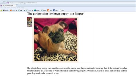 free puppies in ohio craigslist craigslist macon ga farm and garden autos post